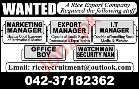 Export Manager & IT Manager Jobs 2020 in Lahore