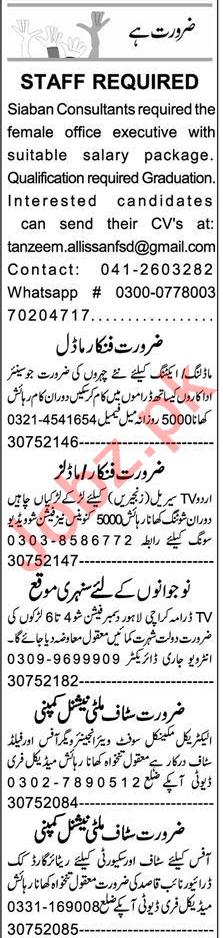 Office Executive & Cashier Jobs 2020 in Faisalabad