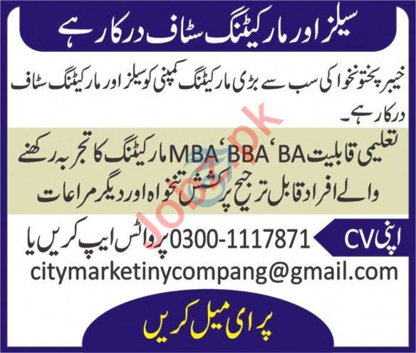 City Marketing Peshawar Jobs 2020 Sales & Marketing Staff