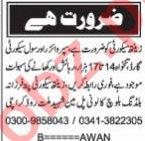 Nawaiwaqt Sunday Classified Ads 22 Nov 2020 for Security