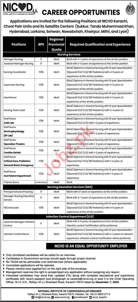 Nursing Education Services NES NICVD Karachi Jobs 2020