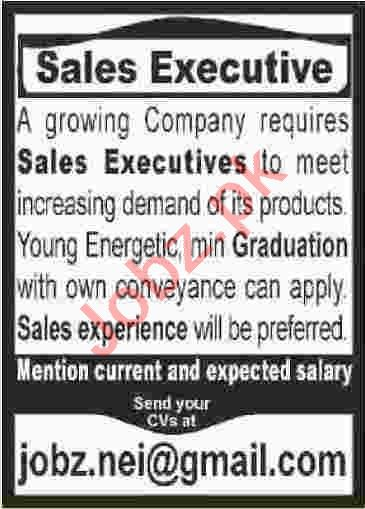 Sales Executive Jobs Career Opportunity in Karachi