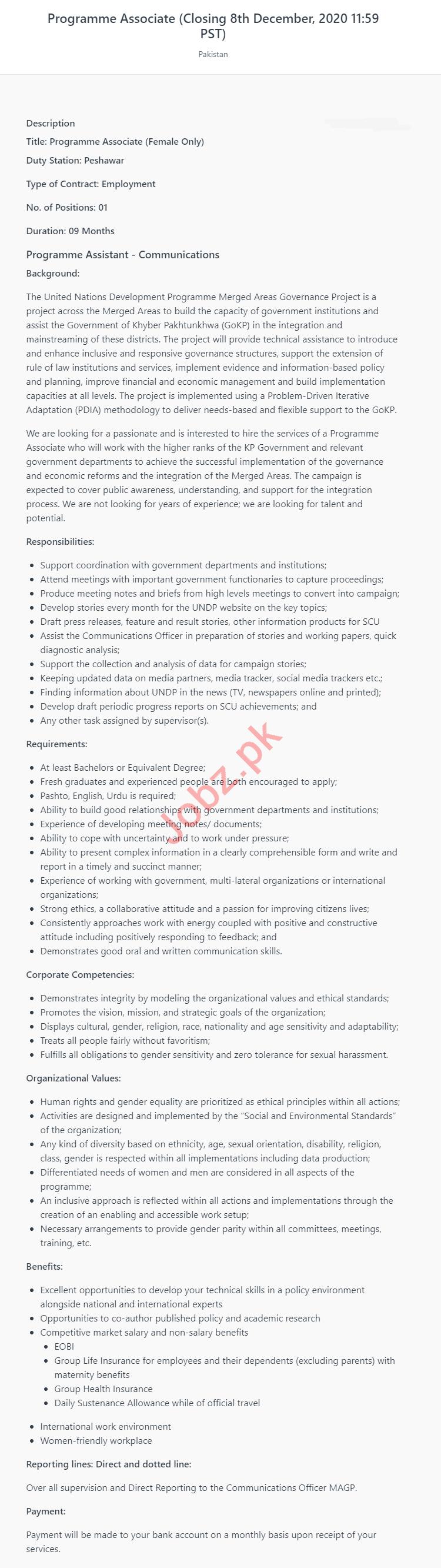 Female Program Associate Jobs 2020 in UNDP Pakistan