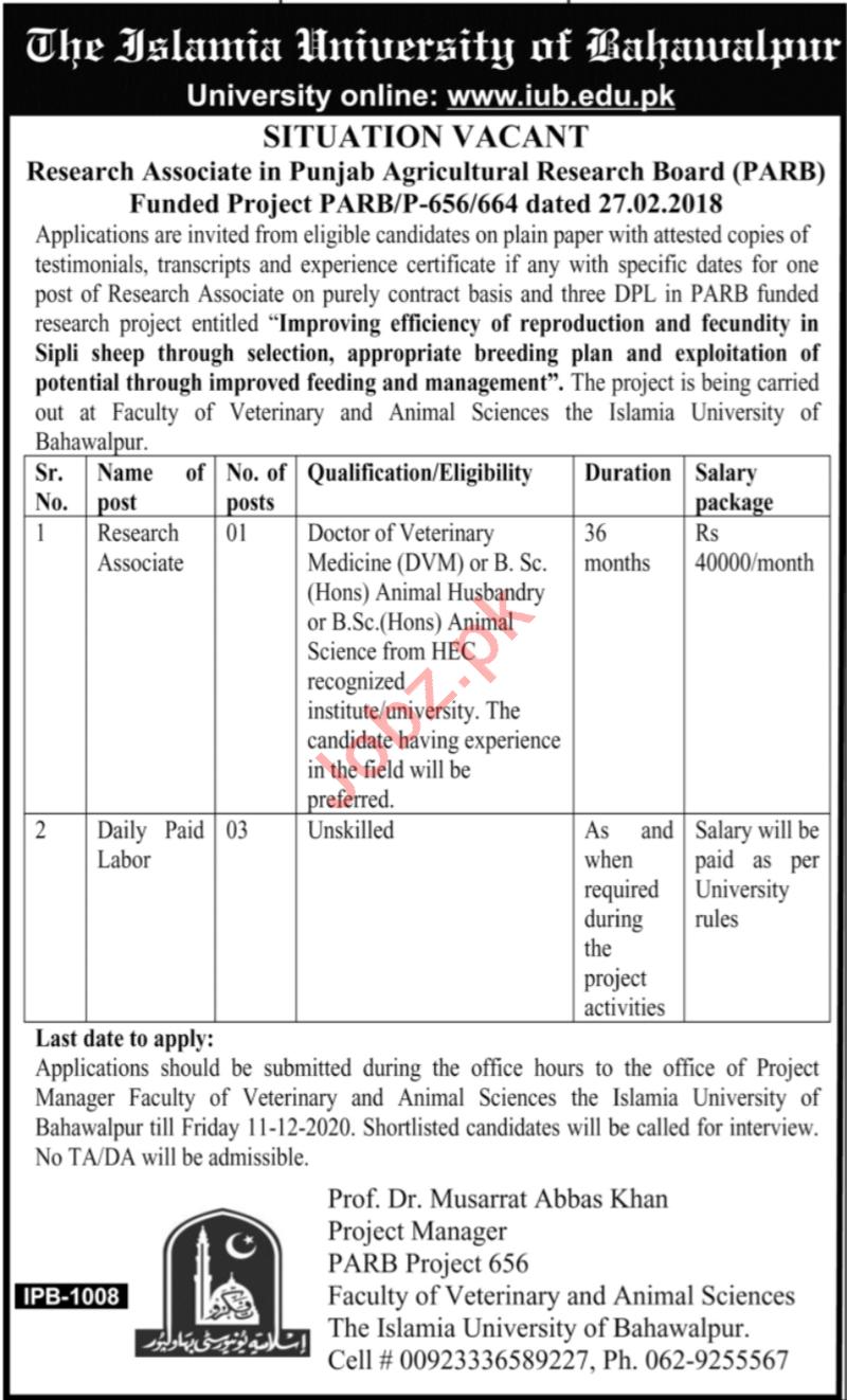 Islamia University of Bahawalpur Jobs for Research Associate
