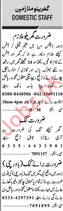 Jang Sunday Classified Ads 29 Nov 2020 for Domestic Staff
