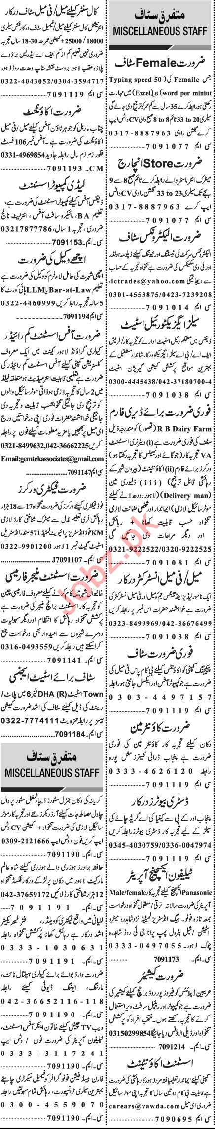 Jang Sunday Classified Ads 29 Nov 2020 for General Staff