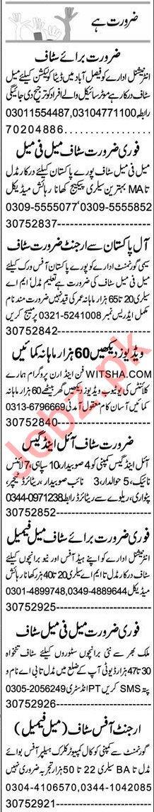 Express Sunday Faisalabad Classified Ads 29 Nov 2020
