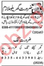Nawaiwaqt Sunday Classified Ads 29 Nov 2020 House Staff