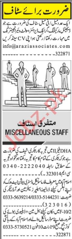 Software Engineer & Quran Teacher Jobs 2020 in Islamabad