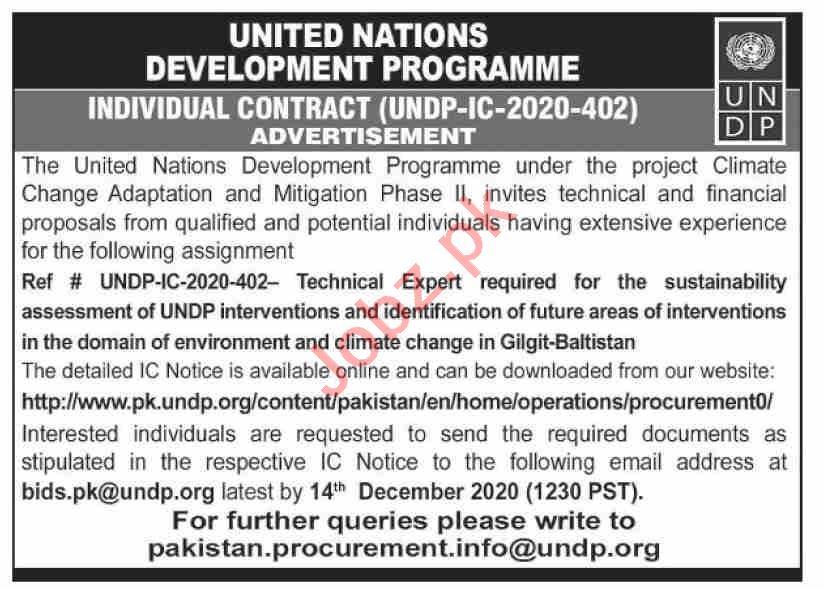 UNDP Pakistan Jobs 2020 for Technical Expert