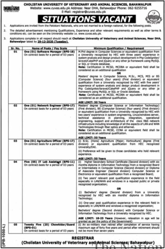 Cholistan University Jobs 2020 in Bahawalpur