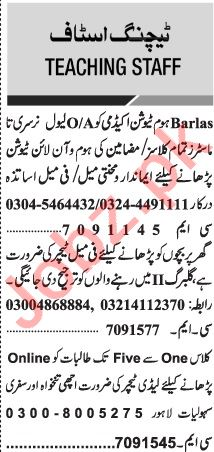 Jang Sunday Classified Ads 6 Dec 2020 for Educational Staff