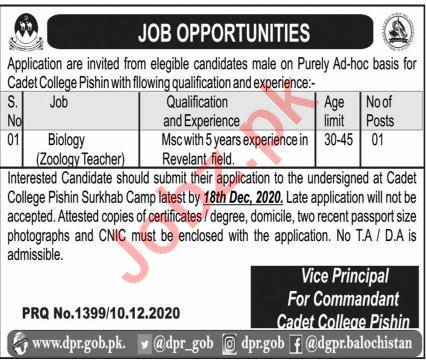 Biology Teacher Jobs 2020 in Cadet College Pishin