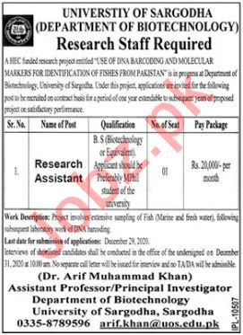 Research Assistant Jobs 2020 in University of Sargodha