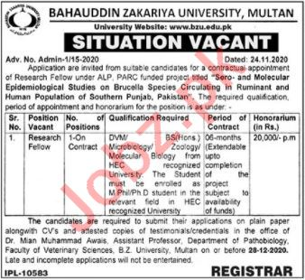 Bahaudding Zakriya University BZU Reseach Fellow Jobs 2020