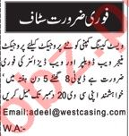 Nawaiwaqt Sunday Classified Ads 13 Dec 2020 for IT Staff