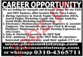 Pheasant International Lahore Jobs 2020 for SEO & Engineer