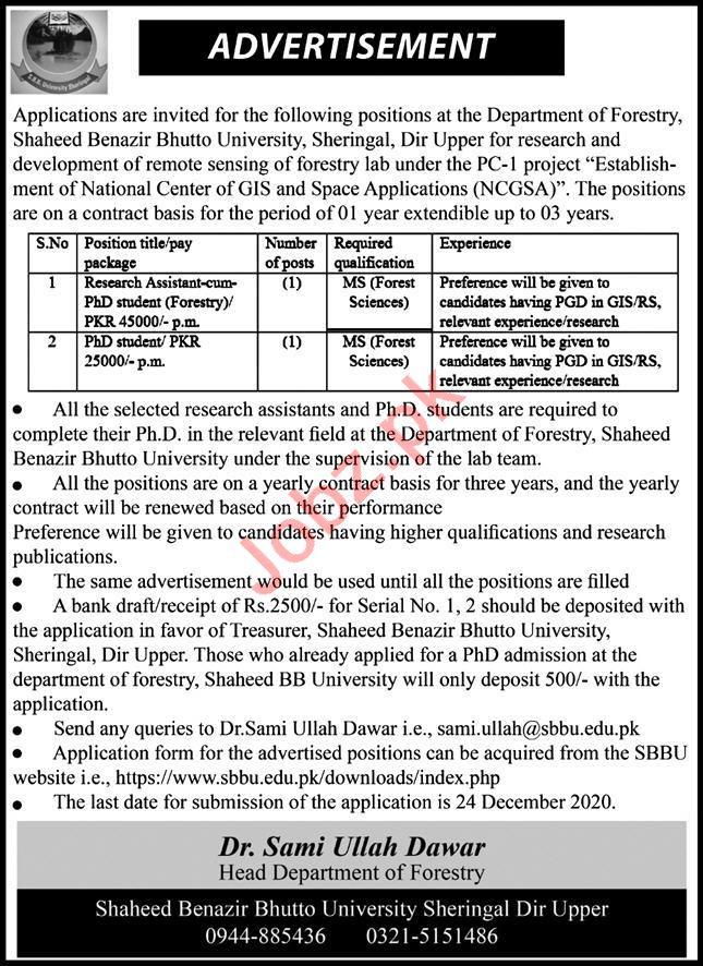 Shaheed Benazir Bhutto University Sheringal Dir Upper Jobs