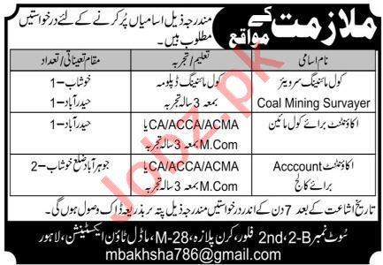 Coal Mining Surveyor & Accountant Jobs 2021 in Lahore