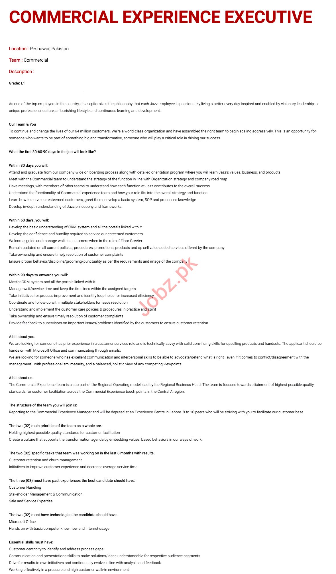 Executive & Commercial Experience Executive Jobs 2020