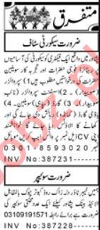 Security Incharge & Sweeper Jobs 2021 in Peshawar