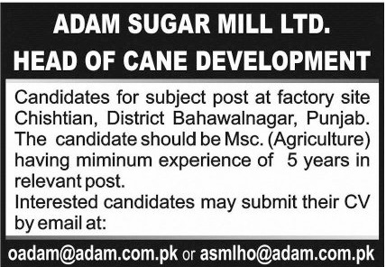 Head of Cane Development Job 2021 in Bahawalnagar