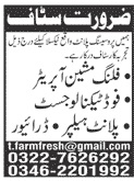 Dairy Processing Plant Jobs 2020 in Taxila