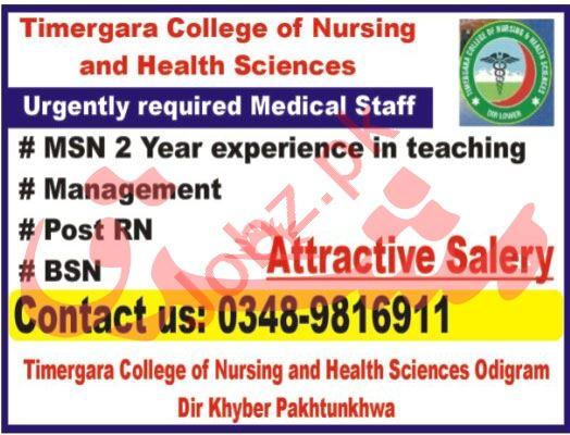Timergara College of Nursing & Health Sciences Jobs 2021