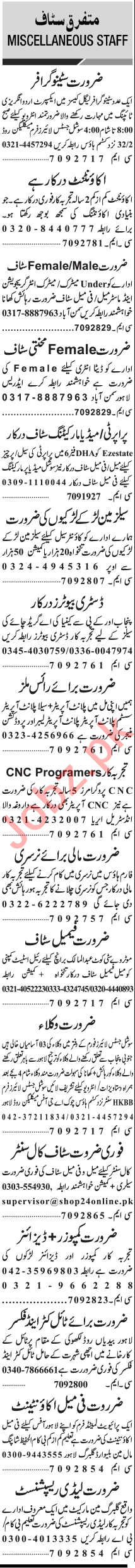 Jang Sunday Classified Ads 3rd Jan 2021 for Management Staff