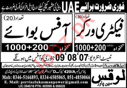 Factory Worker & Office Boy Jobs 2021 in Saudi Arabia
