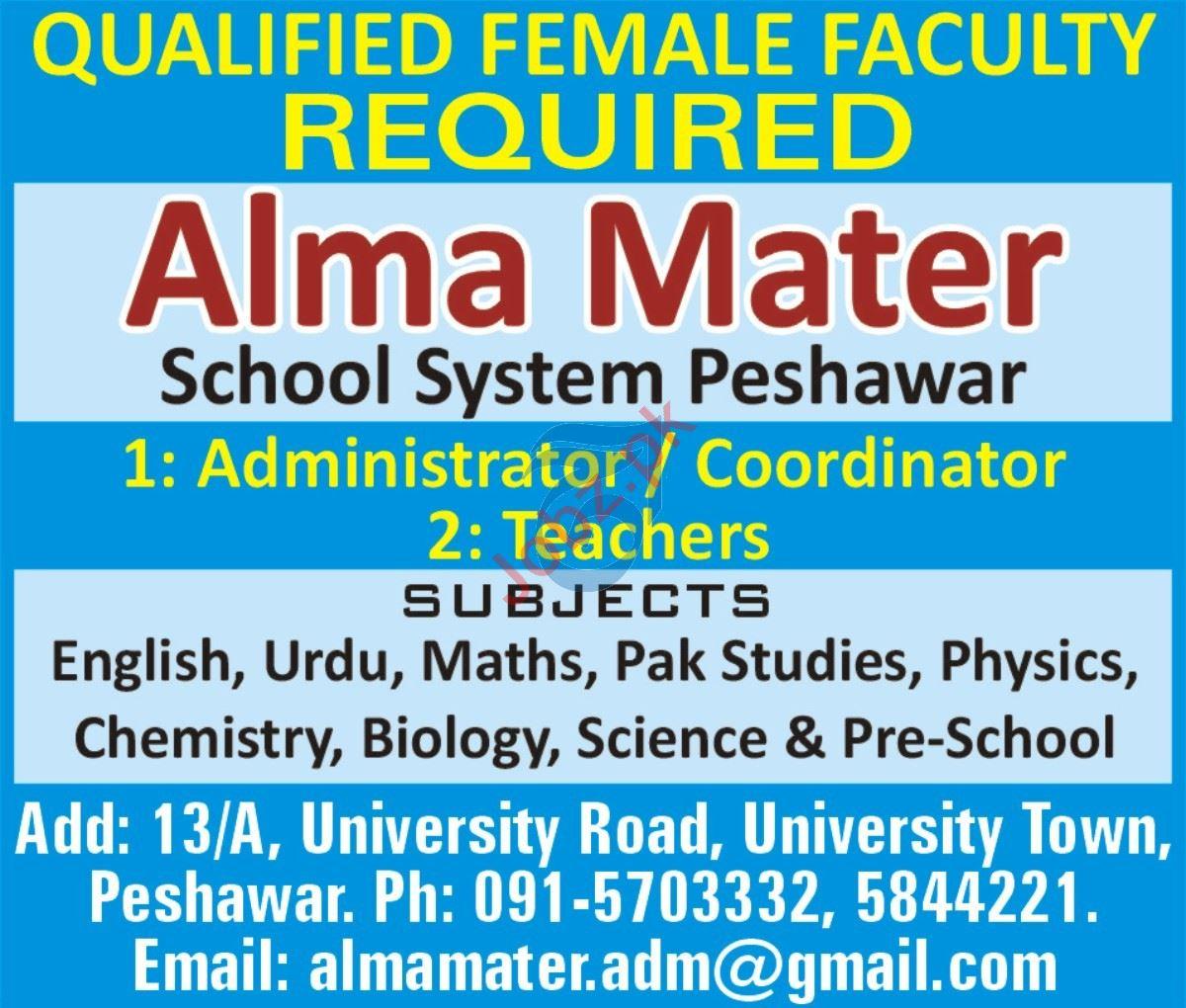 Alma Mater School System Peshawar Jobs 2021 for Coordinator
