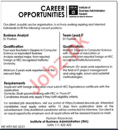 IBA Institute Karachi Jobs 2021 for Business Analyst
