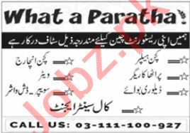 What a Paratha Lahore Jobs 2021 for Waiter & Delivery Boy