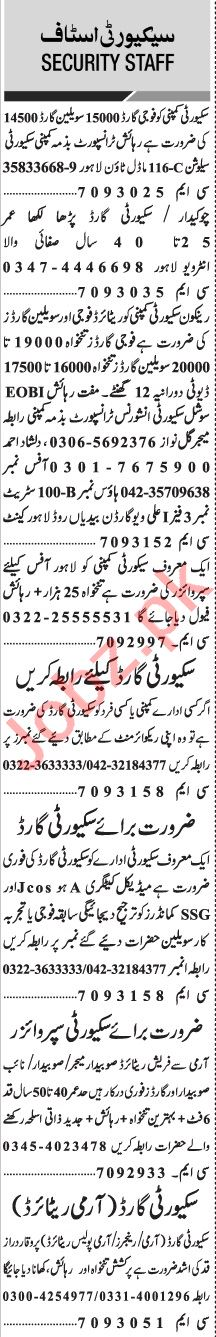 Jang Sunday Classified Ads 10 Jan 2021 for Security Staff