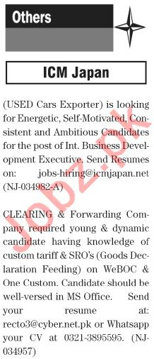 The News Sunday Classified Ads 10 Jan 2021 for General