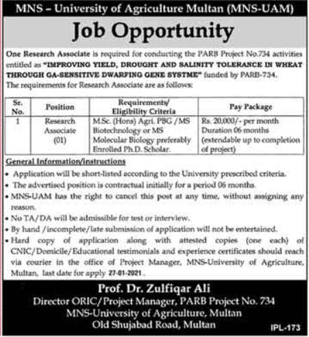MNS University of Agriculture Job For Research Associate