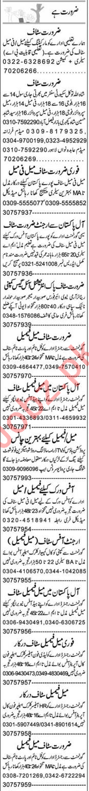 Insurance Agent & Receptionist Jobs 2021 in Faisalabad