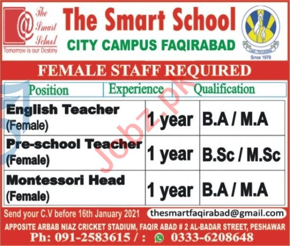The Smart School City Campus Faqirabad Peshawar Jobs 2021