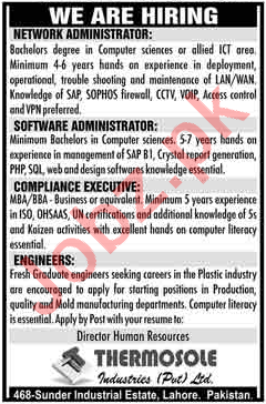 IT Staff Jobs Thermosole Industruies Private Limited