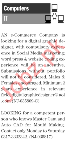Daily The News Sunday 17th January IT Staff Jobs 2021