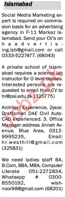 The News Sunday 17 January IT Staff Jobs 2021 Islamabad