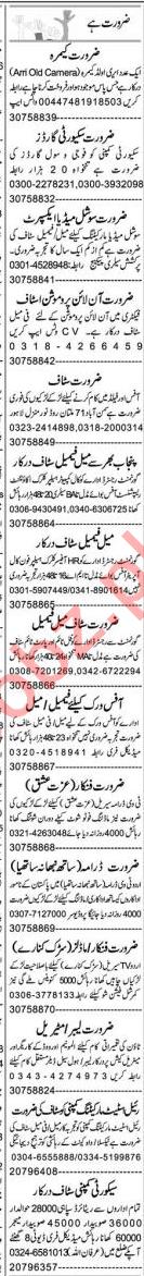 Business Development Coordinator & Promotion Officer Jobs