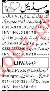 Lady Health Visitor & Pharmacist Jobs 2021 in Peshawar