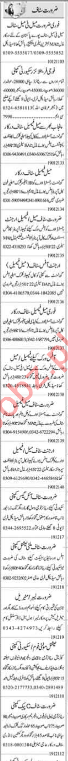 Telephone Operator & Call Operator Jobs 2021 in Islamabad