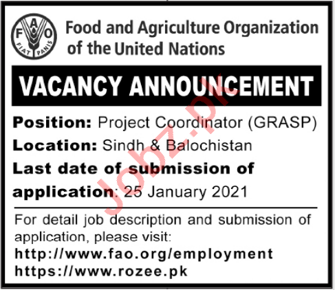 Food & Agriculture Organization FAO Jobs for Coordinator