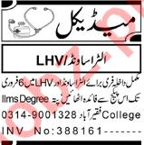 Gynecologist & LHV Jobs 2021 in Peshawar