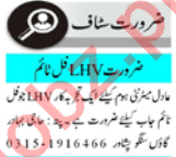 Lady Health Visitor & Gynecologist Jobs 2021 in Peshawar
