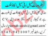 Pharmacy Manager & Pharmacist Jobs 2021 in Peshawar