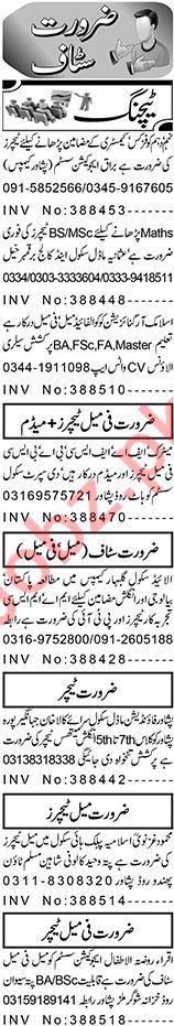 Aaj Sunday Classified Ads 24 Jan 2021 for Teaching Staff