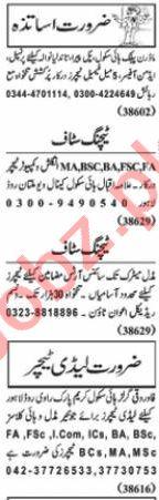 Nawaiwaqt Sunday Classified Ads 24 Jan 2021 for Teaching